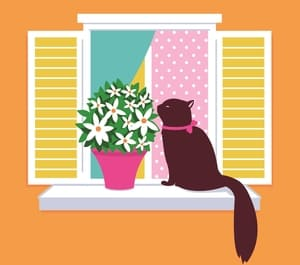 cat on window sill smelling flowers