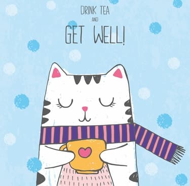 get well soon cat